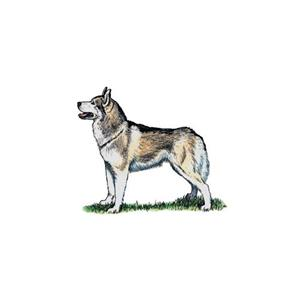 100 Pics Quiz Dog Breeds Pack Level 1 Answer 1 of 5
