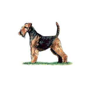 100 Pics Quiz Dog Breeds Pack Level 7 Answer 1 of 5