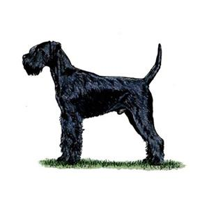 100 Pics Quiz Dog Breeds Pack Level 5 Answer 1 Of 5