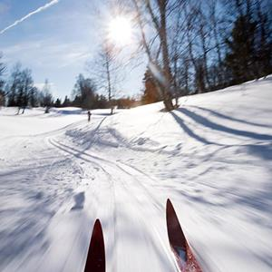 100 Pics Quiz Winter Sports Pack Level 20 Answer 1 of 5