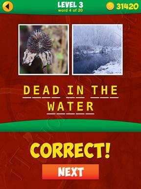 2 Pics 1 Phrase Level 3 Word 4 Solution