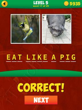 2 Pics 1 Phrase Level 5 Word 17 Solution