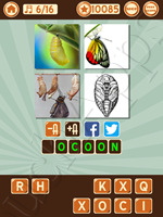 4 Pics 1 Song Level 62 Pic 6