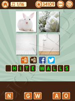 4 Pics 1 Song Level 82 Pic 1