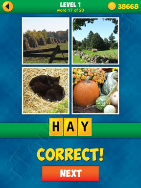 4 Pics 1 Word Puzzle - More Words - Level 1 Word 17 Solution