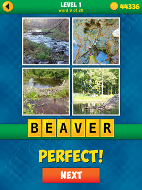 4 Pics 1 Word Puzzle - More Words - Level 1 Word 9 Solution
