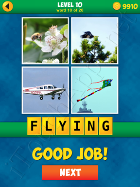 4 Pics 1 Word Puzzle - More Words - Level 10 Word 10 Solution