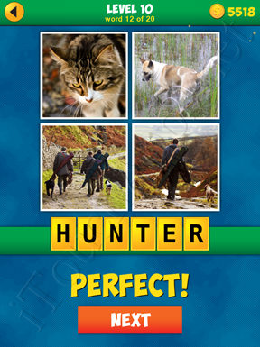 4 Pics 1 Word Puzzle - More Words - Level 10 Word 12 Solution