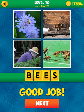 4 Pics 1 Word Puzzle - More Words - Level 10 Word 6 Solution