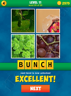 4 Pics 1 Word Puzzle - More Words - Level 11 Word 20 Solution