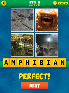 4 Pics 1 Word Puzzle - More Words - Level 11 Word 9 Solution