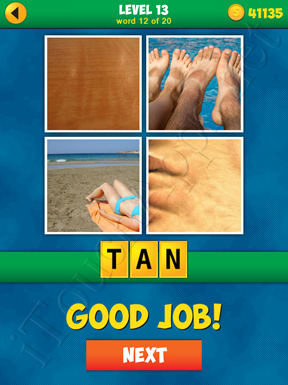 4 Pics 1 Word Puzzle - More Words - Level 13 Word 12 Solution