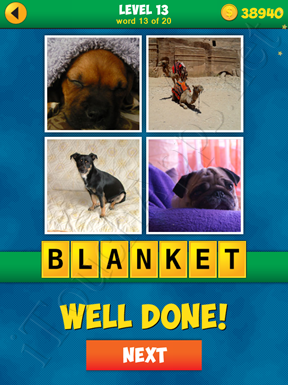 4 Pics 1 Word Puzzle - More Words - Level 13 Word 13 Solution