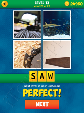 4 Pics 1 Word Puzzle - More Words - Level 13 Word 20 Solution