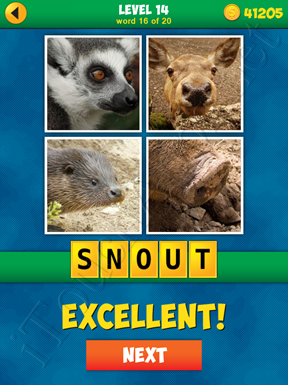 4 Pics 1 Word Puzzle - More Words - Level 14 Word 16 Solution