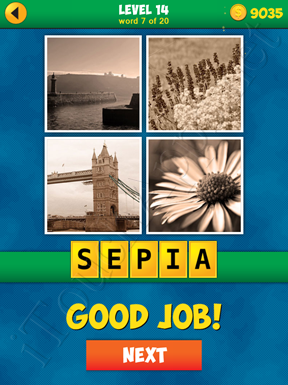 4 Pics 1 Word Puzzle - More Words - Level 14 Word 7 Solution