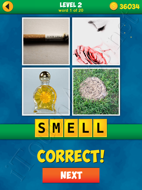 4 Pics 1 Word Puzzle - More Words - Level 2 Word 1 Solution