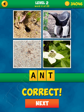 4 Pics 1 Word Puzzle - More Words - Level 2 Word 4 Solution