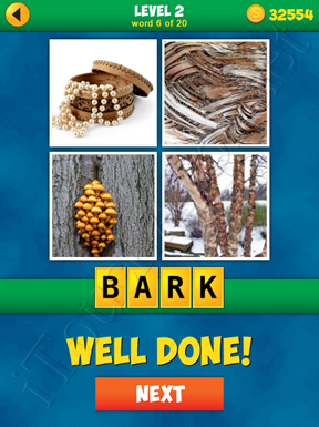 4 Pics 1 Word Puzzle - More Words - Level 2 Word 6 Solution