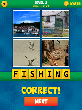 4 Pics 1 Word Puzzle - More Words - Level 3 Word 10 Solution
