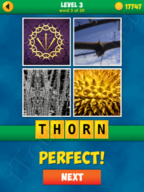 4 Pics 1 Word Puzzle - More Words - Level 3 Word 3 Solution