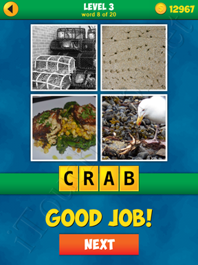 4 Pics 1 Word Puzzle - More Words - Level 3 Word 8 Solution