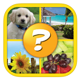 4 Pics 1 Word Puzzle - More Words Answers / Cheats / Solutions