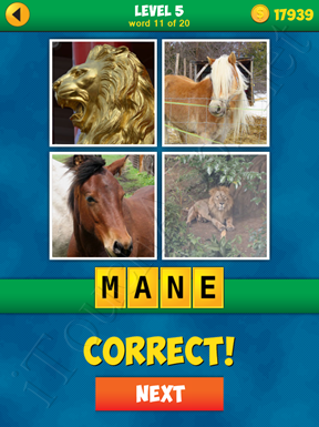 4 Pics 1 Word Puzzle - More Words - Level 5 Word 11 Solution