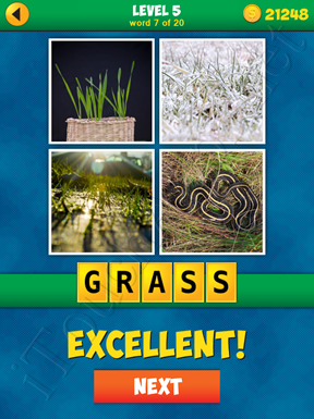 4 Pics 1 Word Puzzle - More Words - Level 5 Word 7 Solution