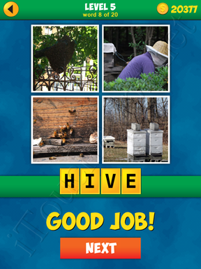 4 Pics 1 Word Puzzle - More Words - Level 5 Word 8 Solution