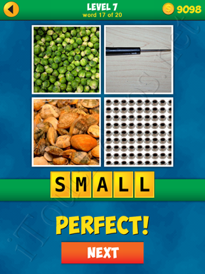 4 Pics 1 Word Puzzle - More Words - Level 7 Word 17 Solution