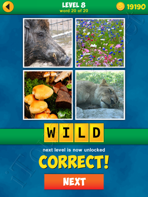 4 Pics 1 Word Puzzle - More Words - Level 8 Word 20 Solution
