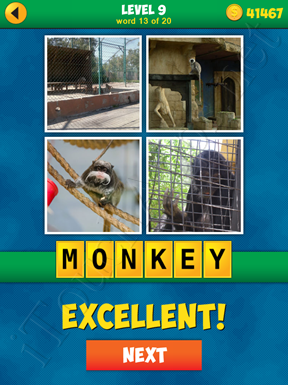 4 Pics 1 Word Puzzle - More Words - Level 9 Word 13 Solution