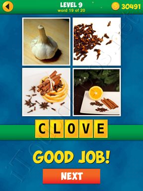 4 Pics 1 Word Puzzle - More Words - Level 9 Word 19 Solution