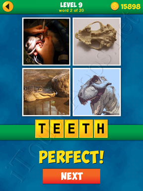 4 Pics 1 Word Puzzle - More Words - Level 9 Word 2 Solution