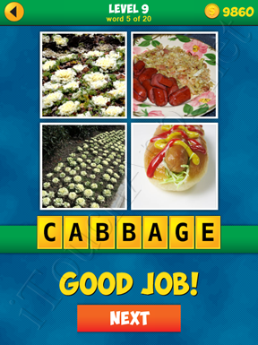 4 Pics 1 Word Puzzle - More Words - Level 9 Word 5 Solution