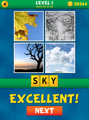 4 Pics 1 Word Puzzle - What's That Word Level 1 Word 22 Solution