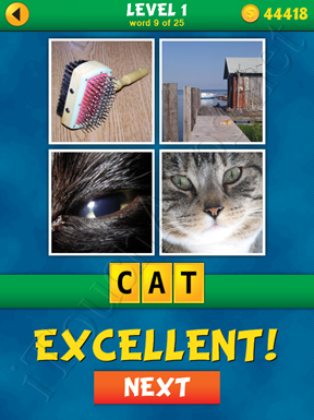 4 Pics 1 Word Puzzle - What's That Word Level 1 Word 9 Solution