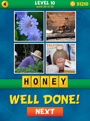 4 Pics 1 Word Puzzle - What's That Word Level 10 Word 20 Solution