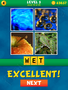 4 Pics 1 Word Puzzle - What's That Word Level 3 Word 19 Solution