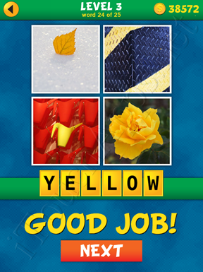 4 Pics 1 Word Puzzle - What's That Word Level 3 Word 24 Solution
