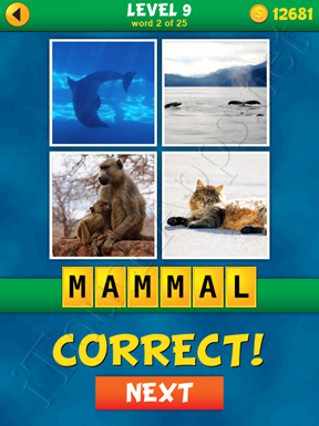 4 Pics 1 Word Puzzle - What's That Word Level 9 Word 2 Solution