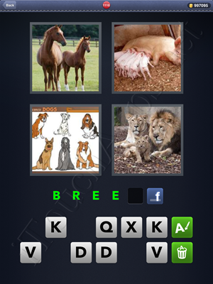4 Pics 1 Word Level 1110 Solution