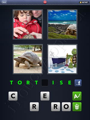 4 Pics 1 Word Level 1203 Solution