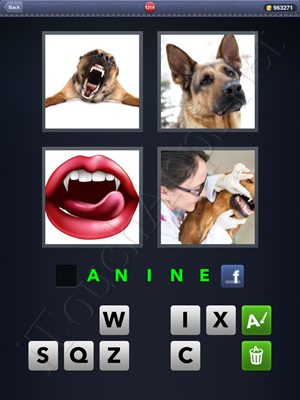 4 Pics 1 Word Level 1214 Solution