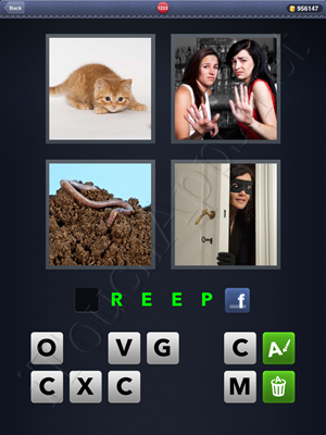 4 Pics 1 Word Level 1233 Solution