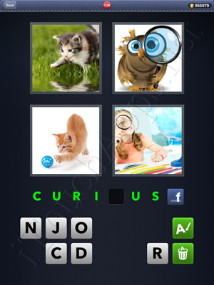 4 Pics 1 Word Level 1236 Solution