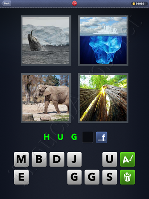 4 Pics 1 Word Level 1334 Solution