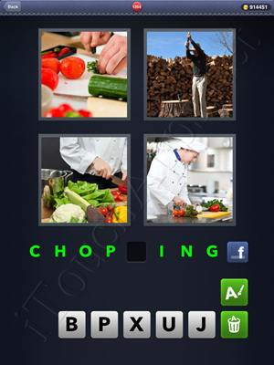 4 Pics 1 Word Level 1354 Solution