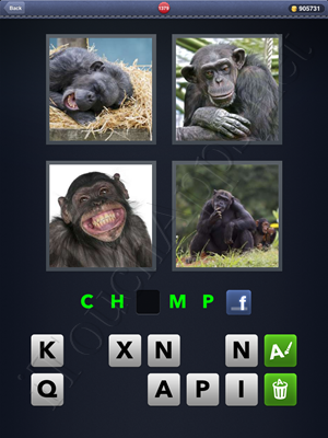 4 Pics 1 Word Level 1379 Solution